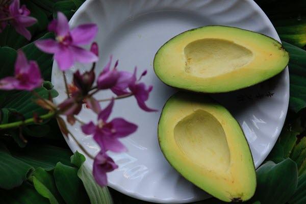 Фото авокадо на тарелке