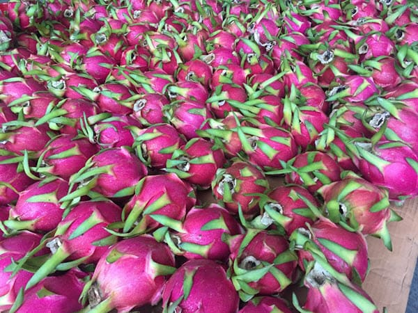 фото dragon fruit на рынке