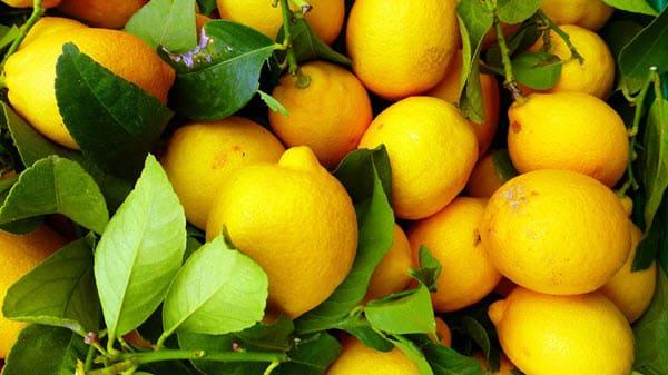 фото свежих лимонов