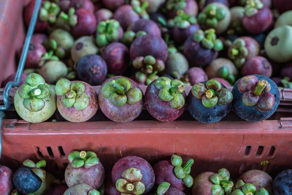 фото показывает разную степень зрелость плодов