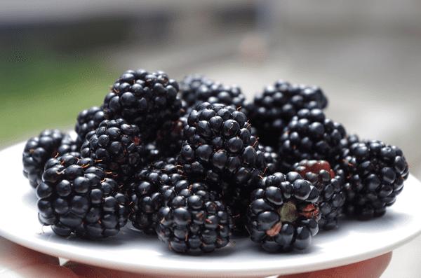 фото плодов ежевики на тарелке