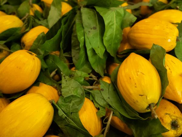 фото плодов фрукта канистель на рынке