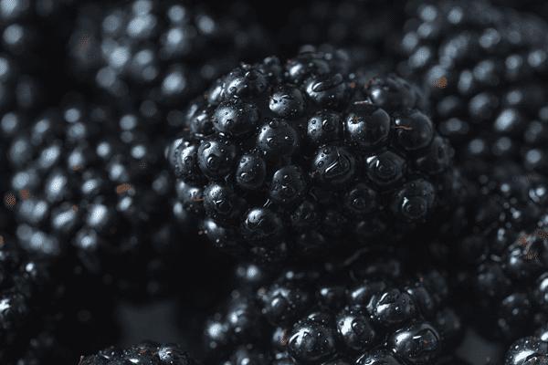 ягоды шелковицы