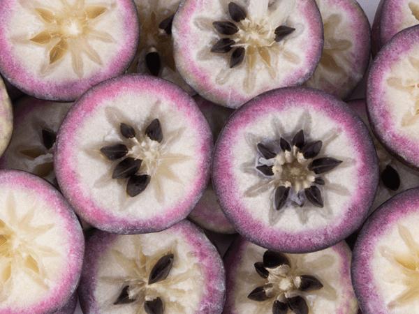 фото разрезанных плодов  хризофиллума