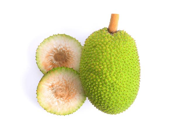 фото разрезанного плода хлебного дерева