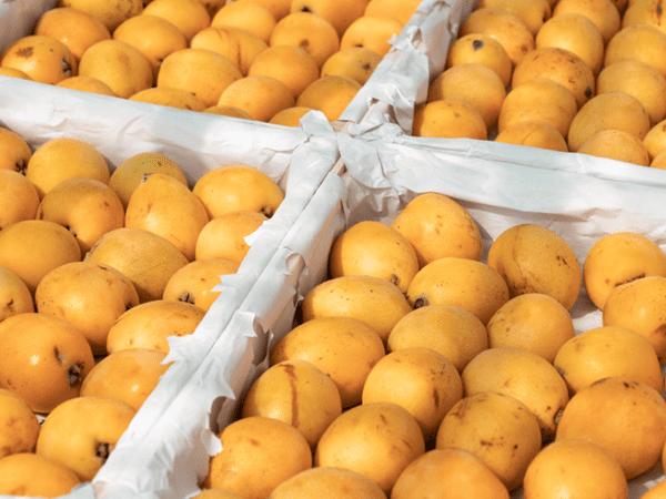 фото плодов мушмулы японской на рынке
