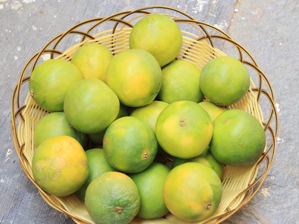 фото плодов лиметты в плетенке