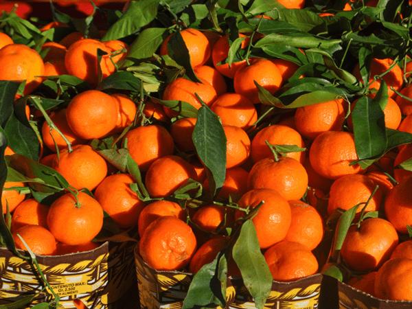 фото плодов танжерина на рынке
