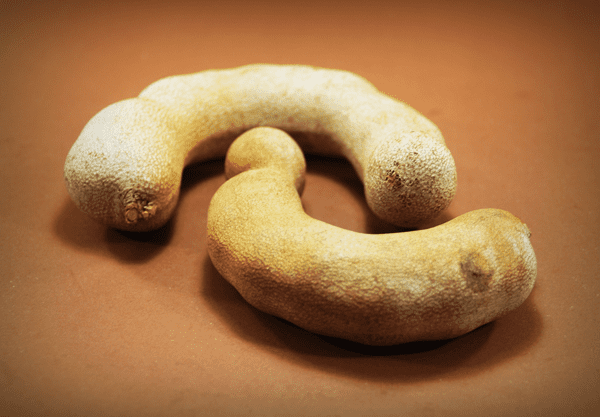 фото плодов тамаринда в отличном состоянии