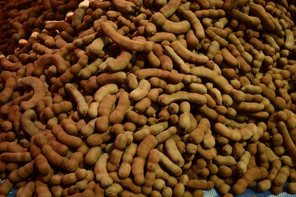 фото плодов тамаринда на рынке